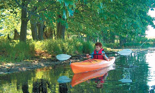 Beaver Island Mi Chamber Of Commerce Visitors Guide