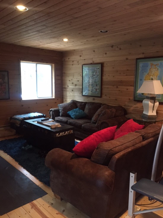 Living Room Lower Level
